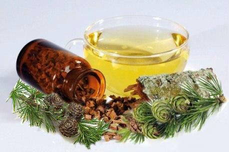масло из лиственницы